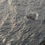 Casa japonesa navegando por el Pacífico