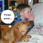 De niños rezando y flexibilidad canina (fotoviñeta)