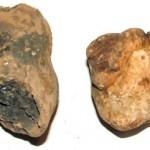 Descubren los cabellos humanos más antiguos de la historia