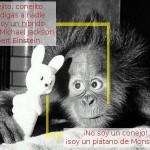 El orangután parlante y el plátano mutante