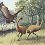 La leyenda del pájaro come-hombres pudo ser cierta