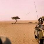 El árbol solitario de Ténéré