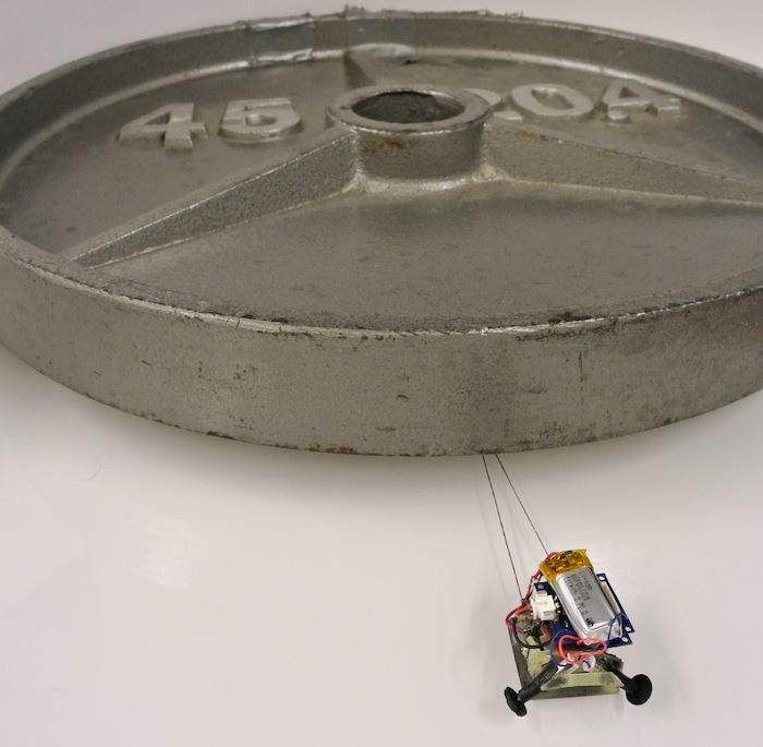 microrobot-de-12-gramos-de-peso-arrastrando-una-pesa-de-24-kgs