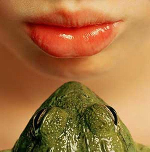 besar una rana