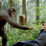 ¿Por qué son tan fuertes los chimpancés en comparación con los humanos?