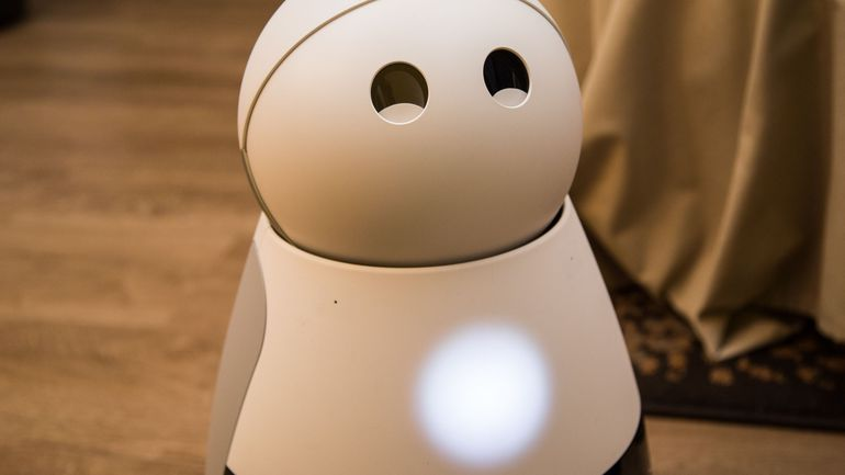 Kuri el robot