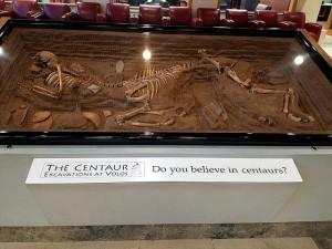¿Crees en los centauros?