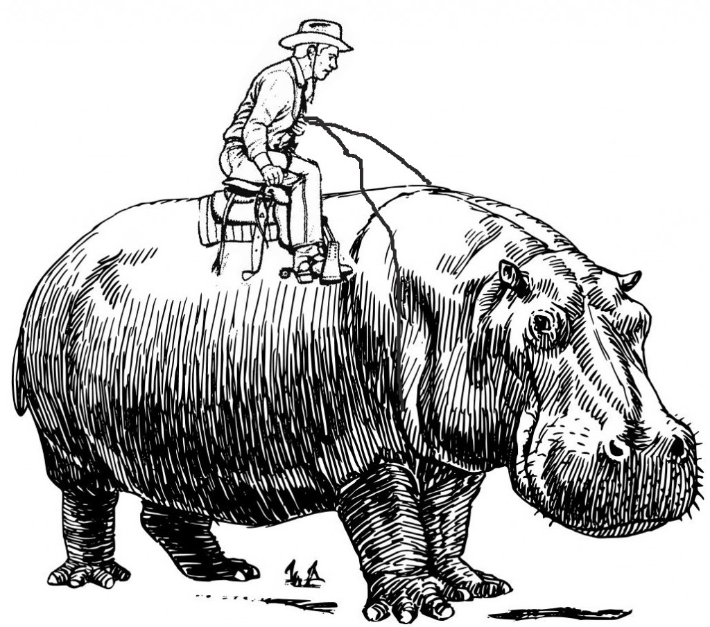 Un cowboy montando a un hipopótamo