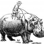 Broussard y la historia del hipopótamo estadounidense